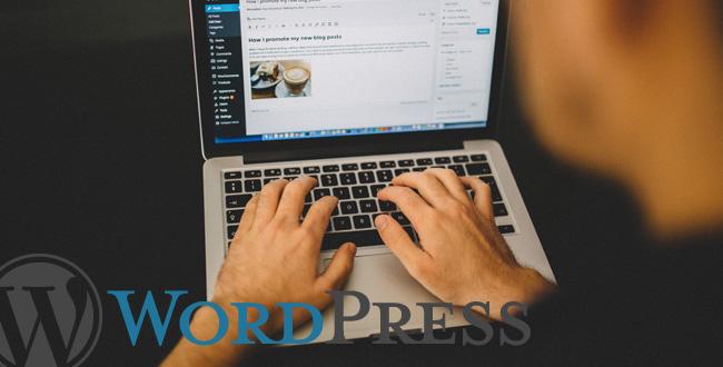Mit Wordpress zur eigenen Website